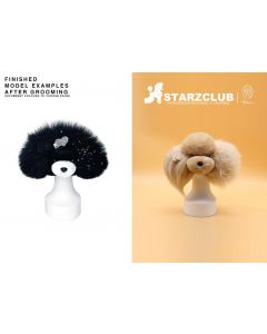 Starzclub Coat for Model Dog Head - Various Colors