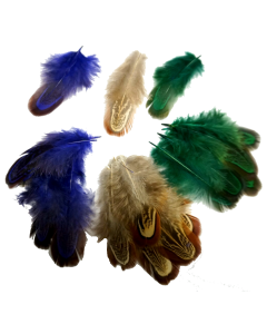 Feathers for Extensions- (100 pack)