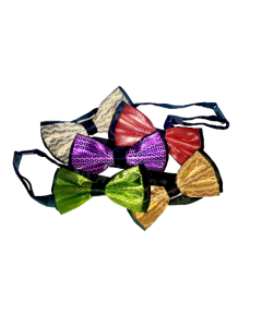 Assorted Bowtie with Adjustable Collar - BlingBling Hard